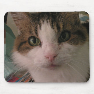 010 Staring Cat MAT Mouse Pad