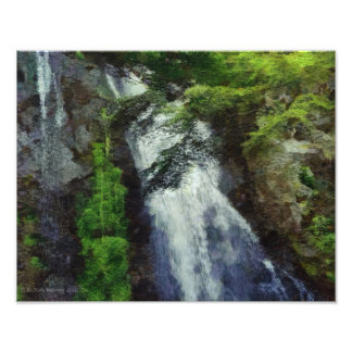 101 JAPAN FOREST WATERFALL PHOTOGRAPH