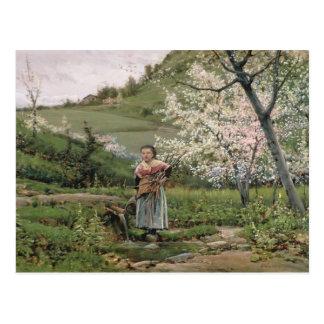 103-0066598/2 Spring Postcard