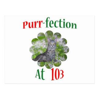 103 Purr-fection Postcard
