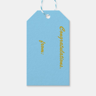 10-Pack of Baby Blue Gift Tags