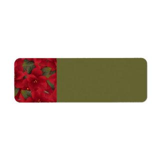 120606-poinsettias-light RICH RED FLOWERS POINSETT