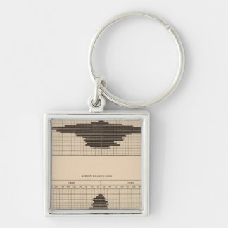 121 Deaths diabetes, scrofula, tabes Silver-Colored Square Key Ring