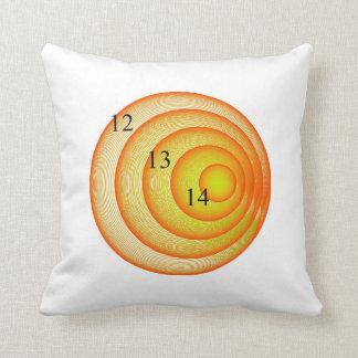 12/13/14 Orange Crush Throw Pillow Cushion