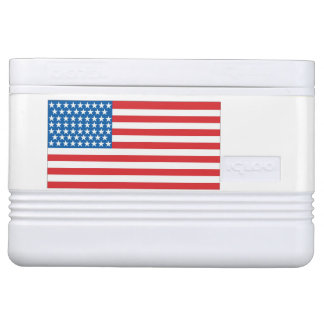 12 can cooler American Flag Design Front & Back Chilly Bin