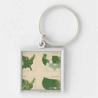133 Increase value of farms 1850-1900 Key Ring