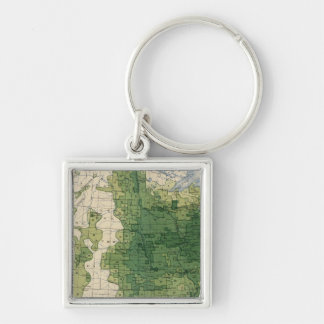 135 Value farm products 1900 Key Ring