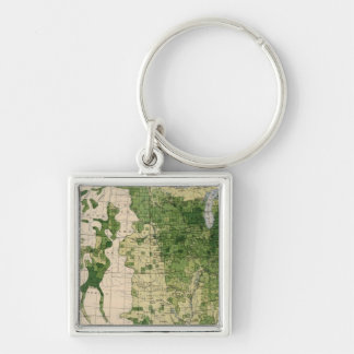 148 Sheep/sq mile Silver-Colored Square Key Ring