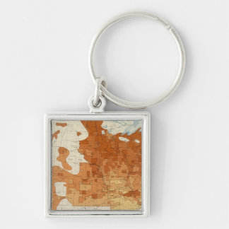 15 Proportion whites foreign parentage 1890 Silver-Colored Square Key Ring