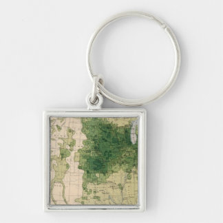 162 Hay, forage/sq mile Silver-Colored Square Key Ring