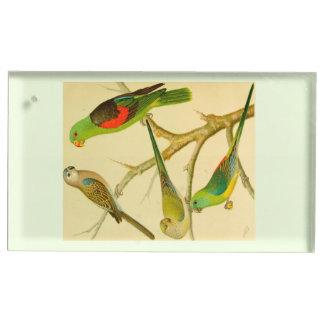 1878 naturalist image of Australian parakeets Table Card Holder