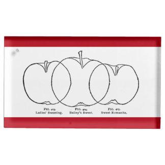 1903 Apple varieties line drawing Table Card Holder