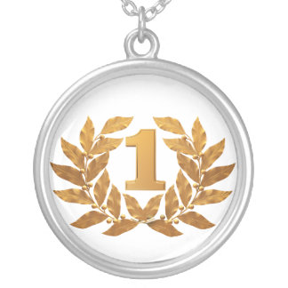 №1, first place winner! silver plated necklace