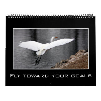 2017 Messages of Affirmation & Positive Thinking Calendar