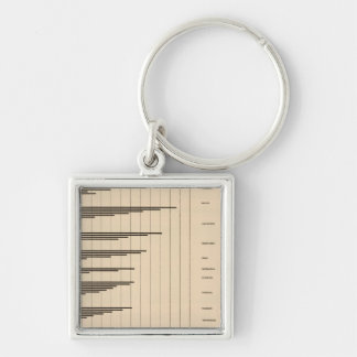 20 Urban to total population by states Silver-Colored Square Key Ring