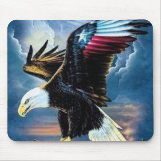 22 eagle, NEVER FOR GET THE COST OF OUR FREEDOM Mouse Pad