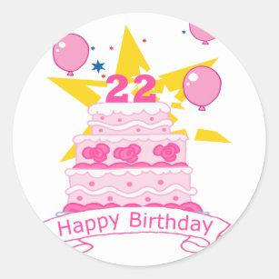 22 Year Old Birthday Cake Classic Round Sticker