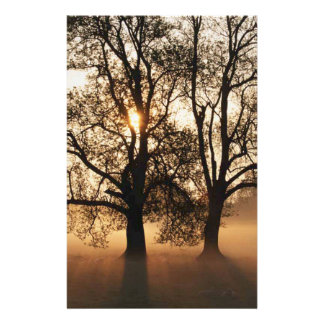 2 TREES SEPIA GOLD ORANGE PERSONALIZED STATIONERY