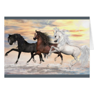 3 Arabians Greeting Card, white envelopes included Greeting Card