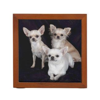 3 chihuahuas desk organiser