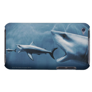 3 Great white sharks (Carcharodon carcharias) iPod Case-Mate Cases