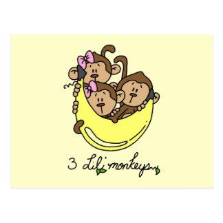 3 Li'l Monkeys Tshirts and Gifts Postcard