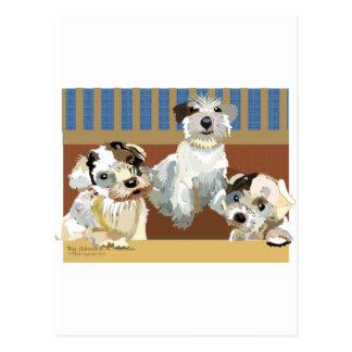 3 Little Sealyhams Postcard