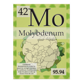 42. Molybdenum (Mo) Periodic Table of the Elements Poster