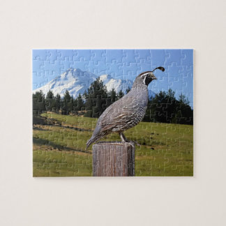 59 QUAIL ON DREAM POINT JIGSAW PUZZLE