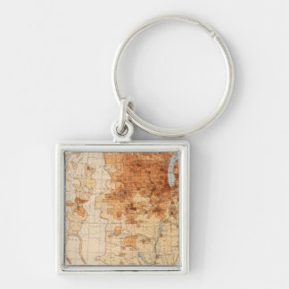 61 Density foreign born Key Ring