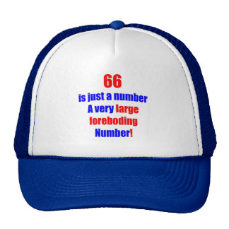 66 Is just a number Mesh Hats