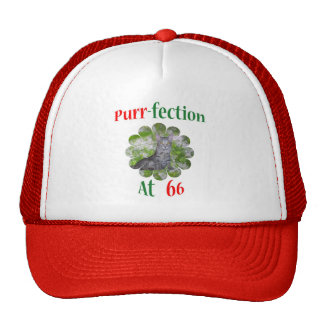 66 Purr-fection Trucker Hat