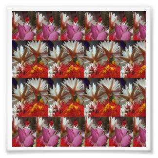 "6"" x 6"", Decorations on Kodak Photo Paper (Satin)"