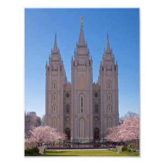 """8.5"""" X 11"""" Salt Lake Temple  trees in pink blooms. Photograph"""