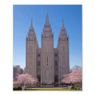 8 X 10 Salt Lake Temple with trees in pink blooms. Photo