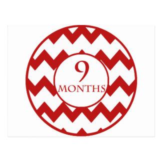 9 Months Chevron Milestone Postcard