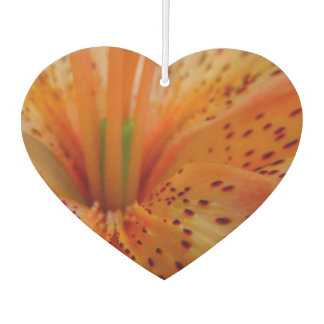 A Beautiful Lily in Pink Car Air Freshener
