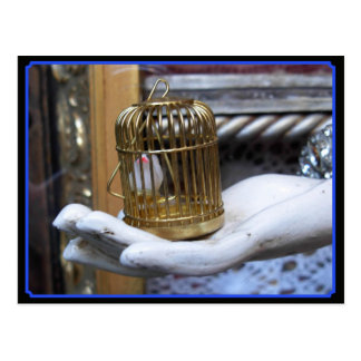 A bird in a cage postcard