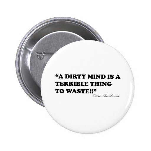 A Dirty Mind Is A Terrible Thing To Waste Pinback Buttons