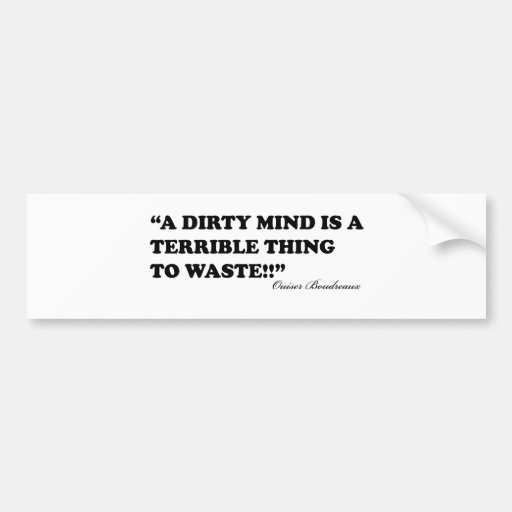 A Dirty Mind Is A Terrible Thing To Waste Bumper Sticker