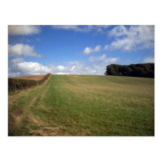 A field in Dorset Postcard