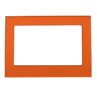 A Fish in an Orange Ocean Frame Magnets