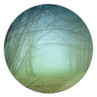 A Forest With Fog Plates