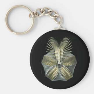 A Fossil Sea Urchin Basic Round Button Key Ring