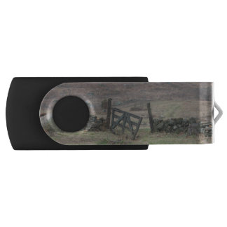 A gate to history. USB flash drive