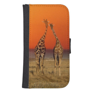 A Giraffe couple walks into the sunset, in