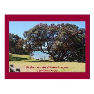 A God of Peace (1 Corinthians 14:33) Postcard