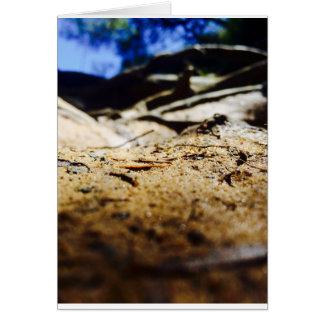 A Grain Of Sand Card