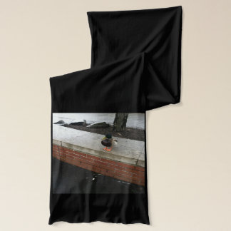 A Lunch Time Companion Scarf
