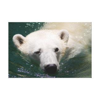 a polar bear just chilling canvas print